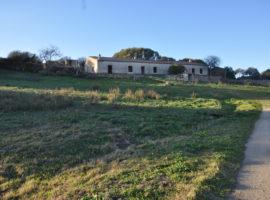 stazzu con 8 ettari terreno in Vendita  zona San Vittore - Olbia