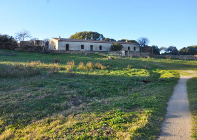 Stazzu 8 ettari terreno San Vittore Olbia